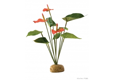 Декоративно растение за терариум - Exo Terra Anthurium Bush pt 2992